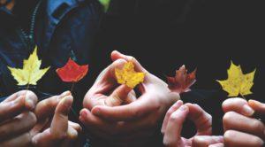 CAC - Autumn